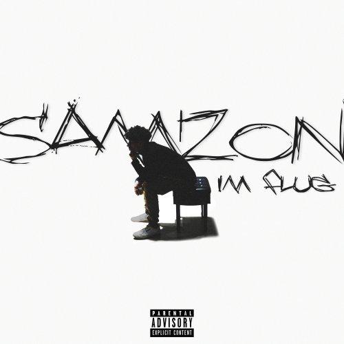Im Flug - Samzon